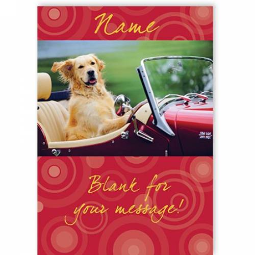 Golden Retriever Vintage Car  Card