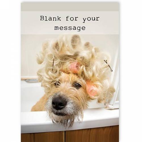 Hair In Rollers Dog Card