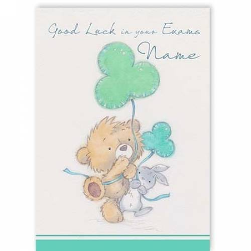 Teddy & Rabbit Good Luck In Your Exams Card