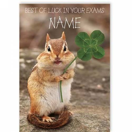 Squirrel Best Of Luck In Your Exams Card