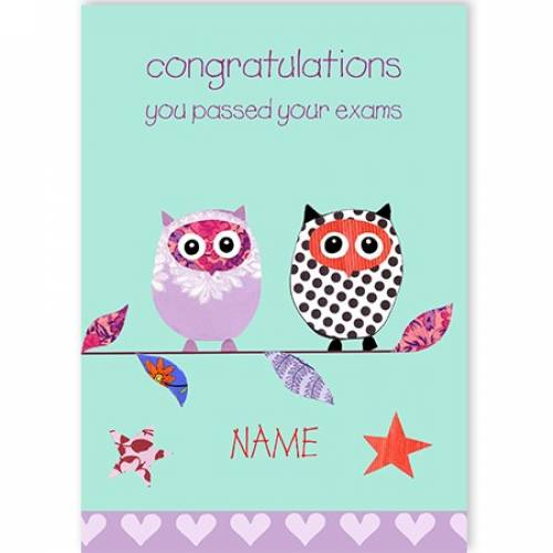Congratulations You Passed Your Exams Owls Card