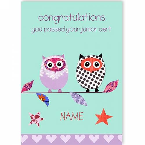 Congratulations You Passed Your Junior Cert Owls Card