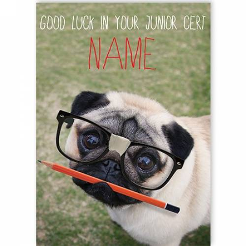 Glasses Pug Good Luck In Your Junior Cert Card