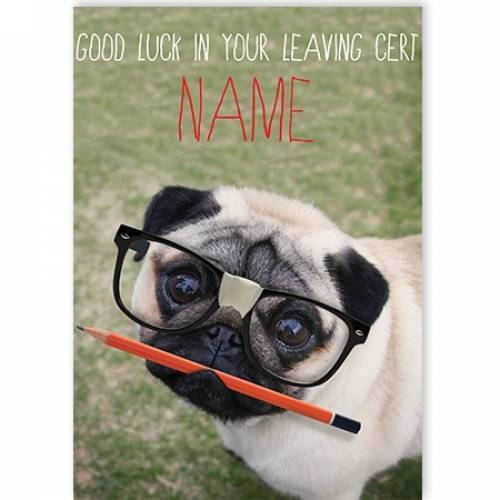Glasses Pug Good Luck In Your Leaving Cert Card