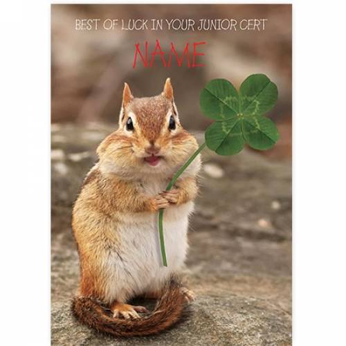 Best Of Luck In Your Junior Cert Four Leaf Clover Card