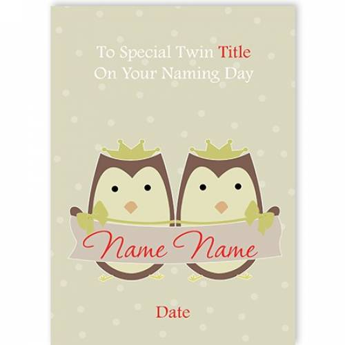 Owls To Special Twin On Naming Day Card