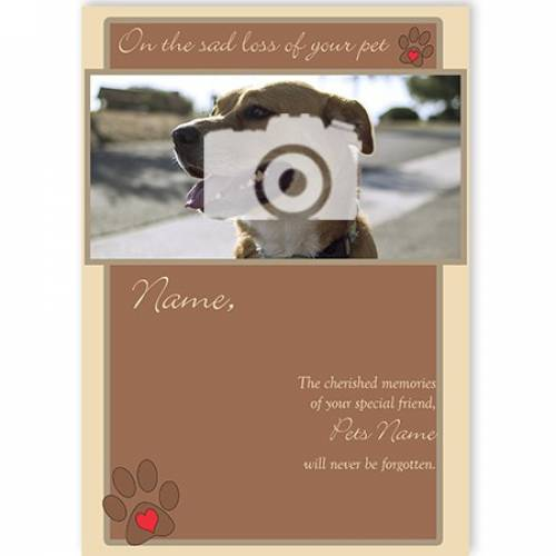 Photo On The Sad Loss Of Your Pet Sympathy Card