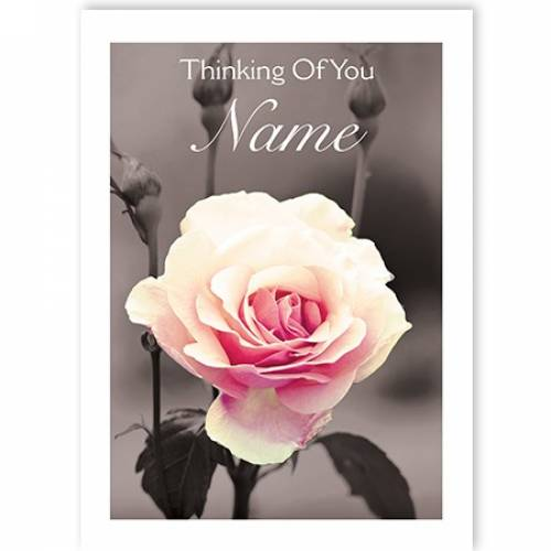 Rose Thinking Of You Sympathy Card