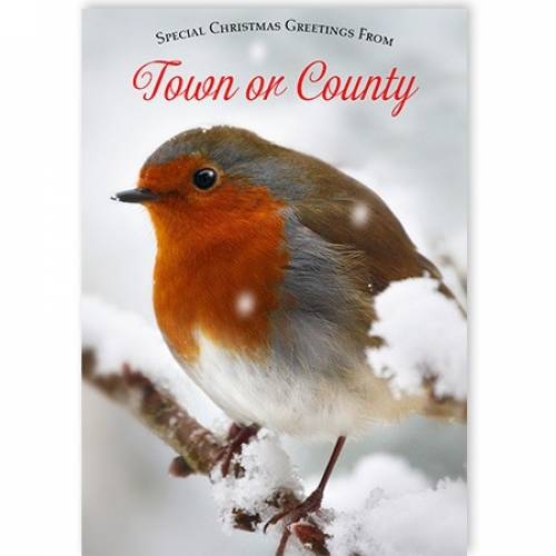 Special Christmas Greetings Robin Town Or County Christmas Card