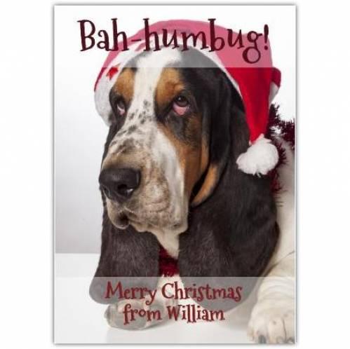 Bah-humbug Dog Christmas Card