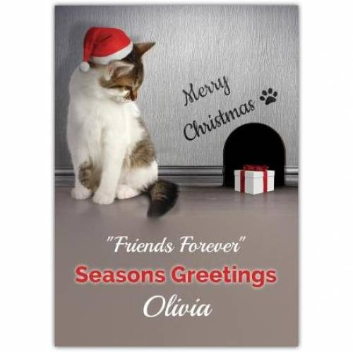 Cat And Mouse Seasons Greetings Christmas Card