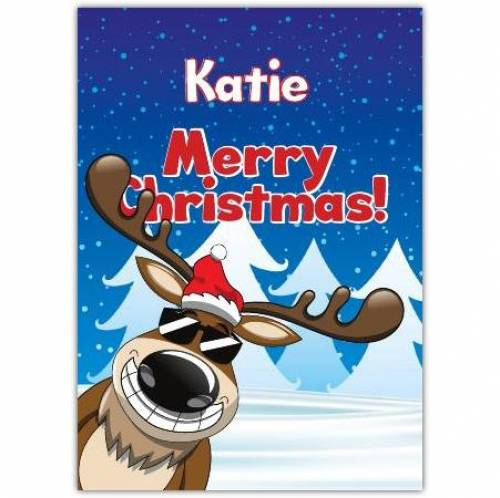 Sunglasses Reindeer Christmas Card