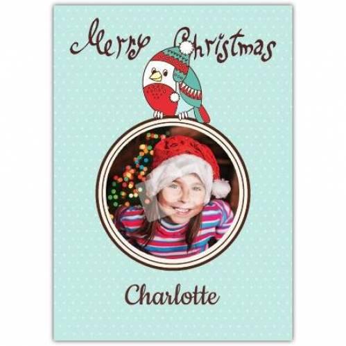 Merry Christmas Photo Robin Card