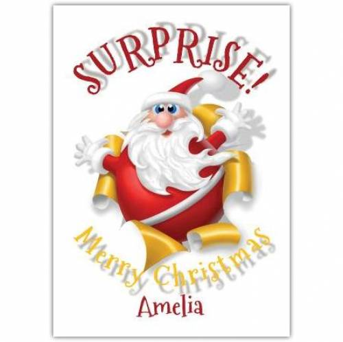 SURPRISE! Merry Christmas Card