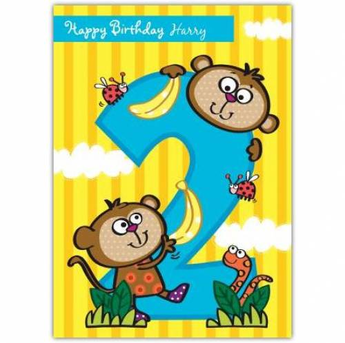 Monkeys Happy 2nd Birthday Card