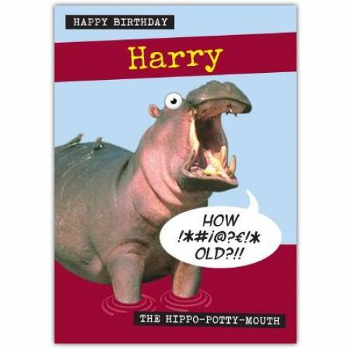 Hippo Potty Mouth Birthday Card