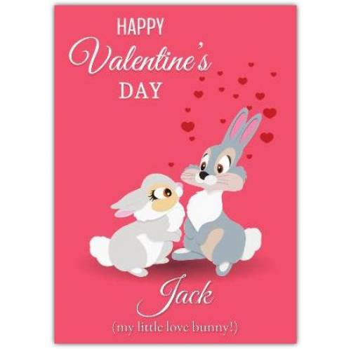 Valentines Day Two Bunnies Card