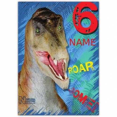 Dinosaur 6th Birthday Card