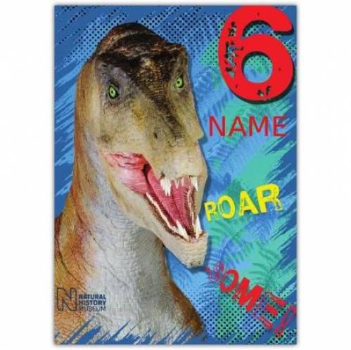 Dinosaur 6th Birthday Card
