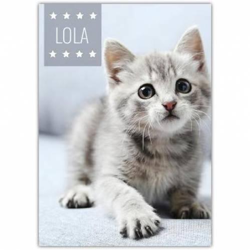 Pet Photo Card