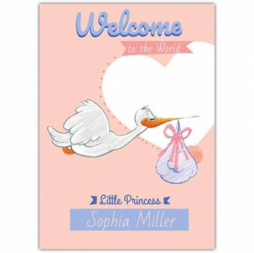 Congratulations Little Princess Stork With Pink Ribbon Card